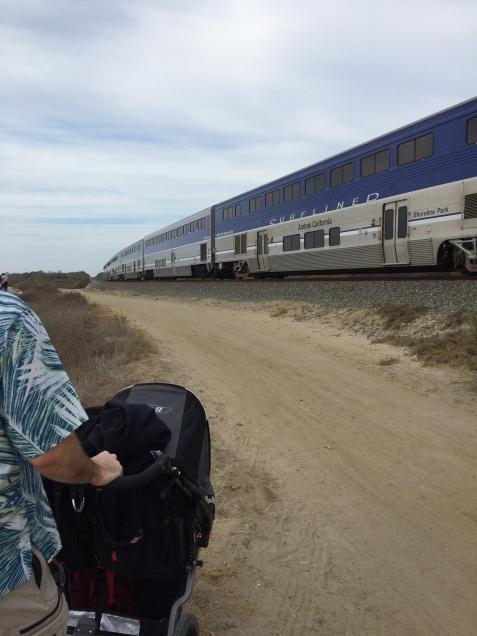 Train at Trestles