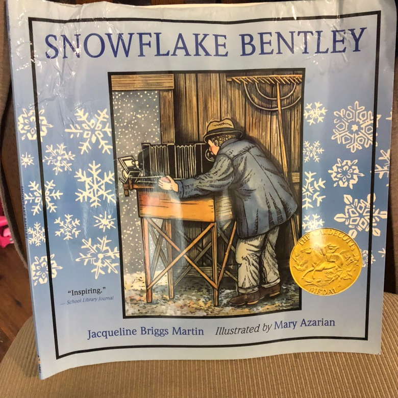KNI Winter Wonderland - Snowflake Bentley